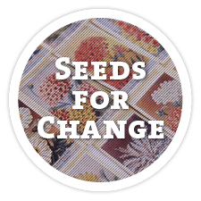 Family-to-Family Seeds for Change